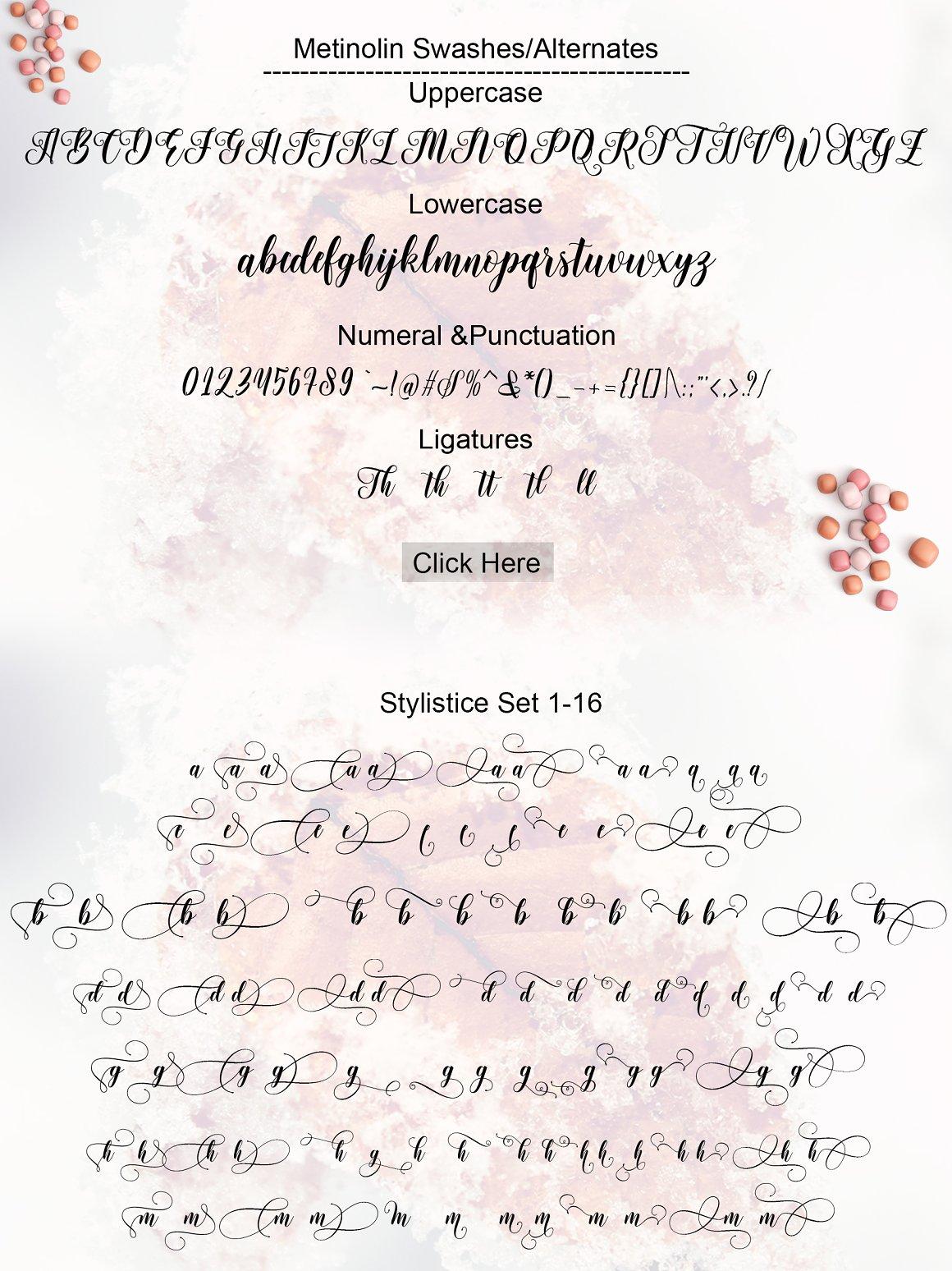 Metinoline Modern Calligraphy Typeface -3