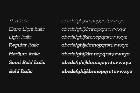 Nayanika Classic Slab Serif Font -3