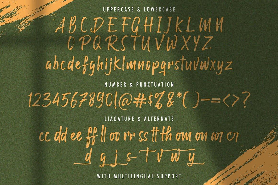 Raffles Bryant Textured Brush Font -3