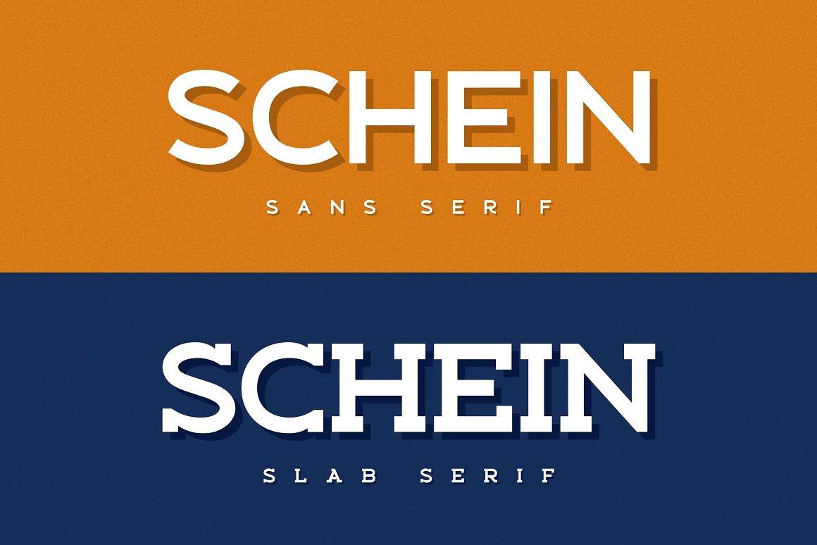 Schein Sans Serif & Slab Serif Font -1