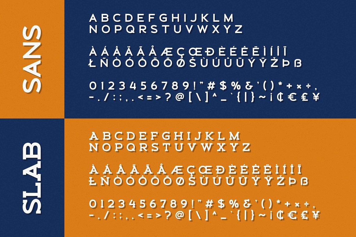 Schein Sans Serif & Slab Serif Font -3