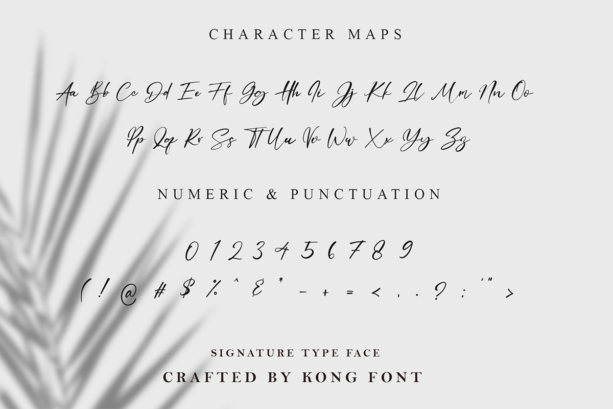 Dellicious Script Handwritten Font -3