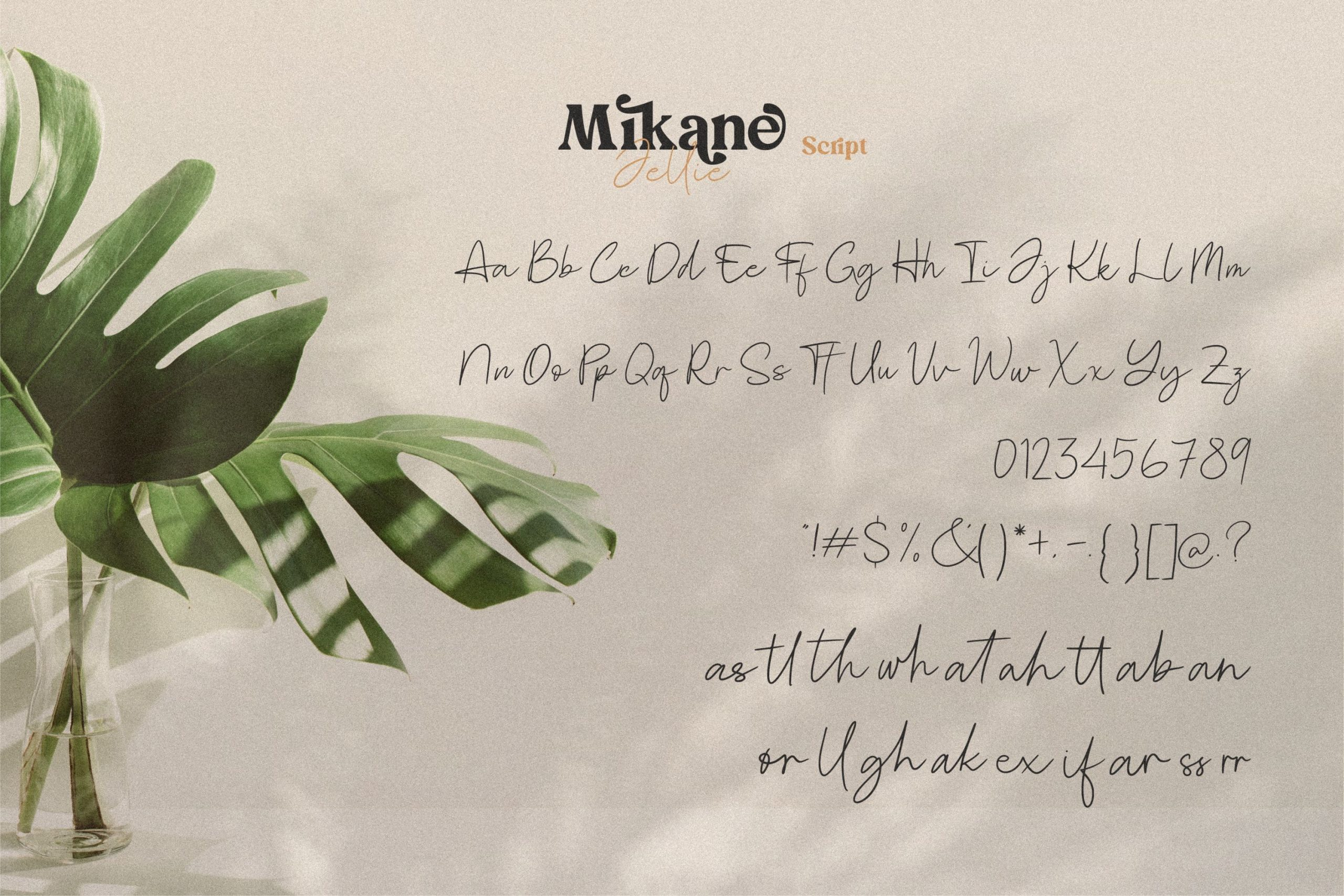 Mikane Jellie Font Duo -2