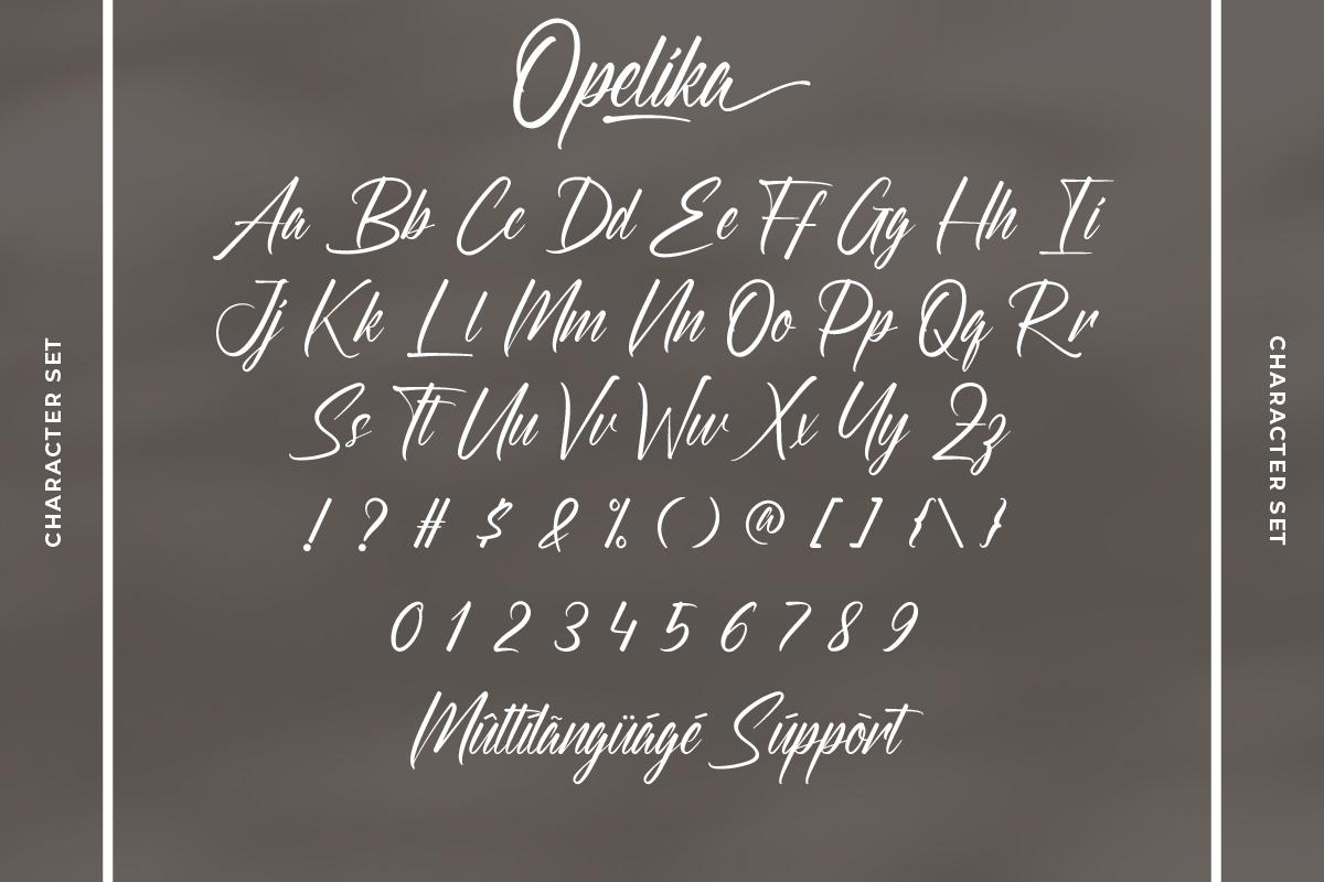 Opelika Handwritten Script Font -3