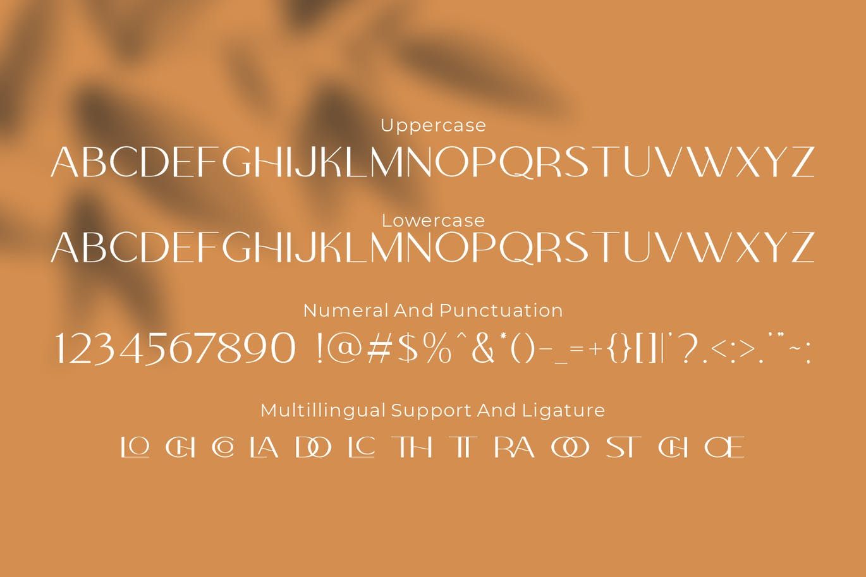 Colabero Modern Sans Font -3