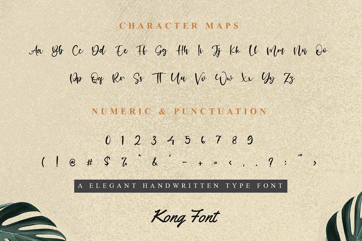 Palmer Like Handwritten Font -3