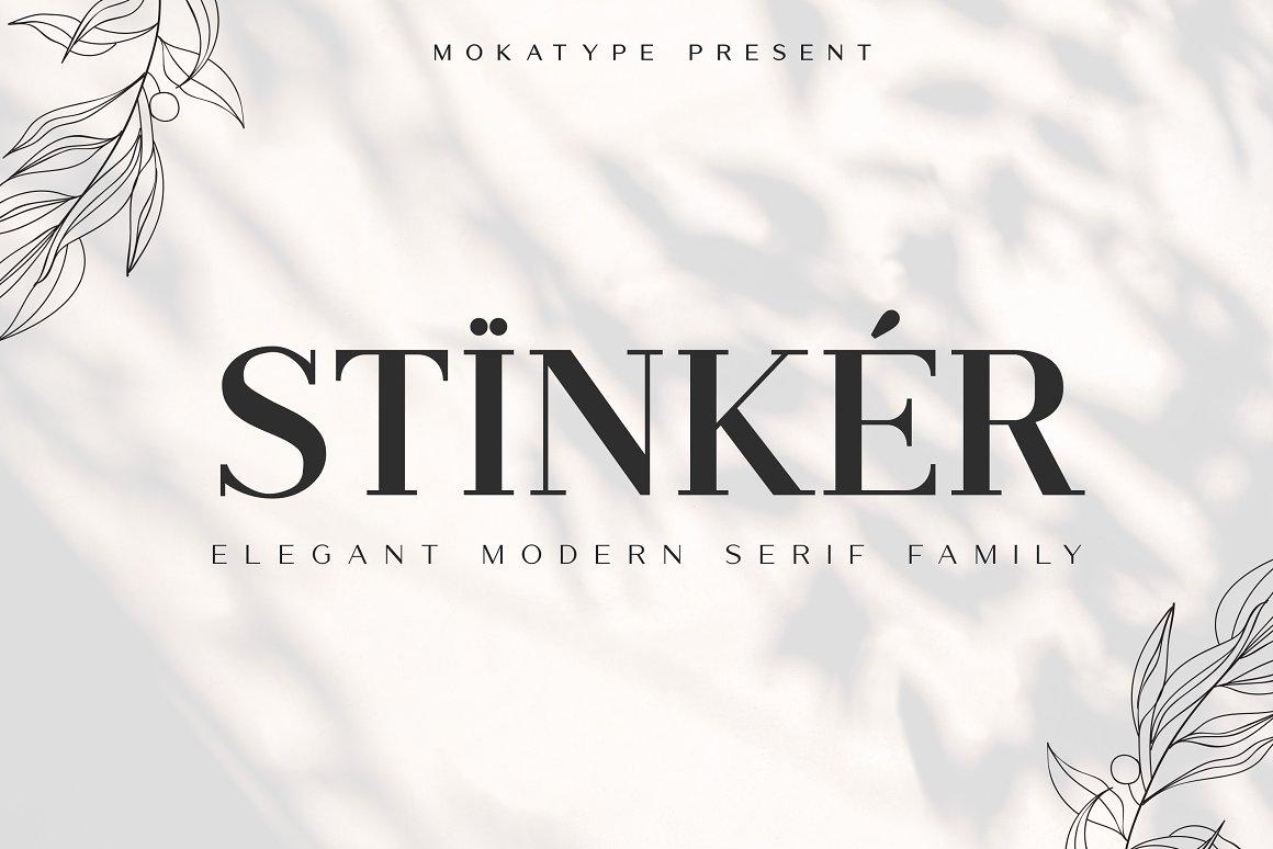 Stinker Modern Serif Font Family -1