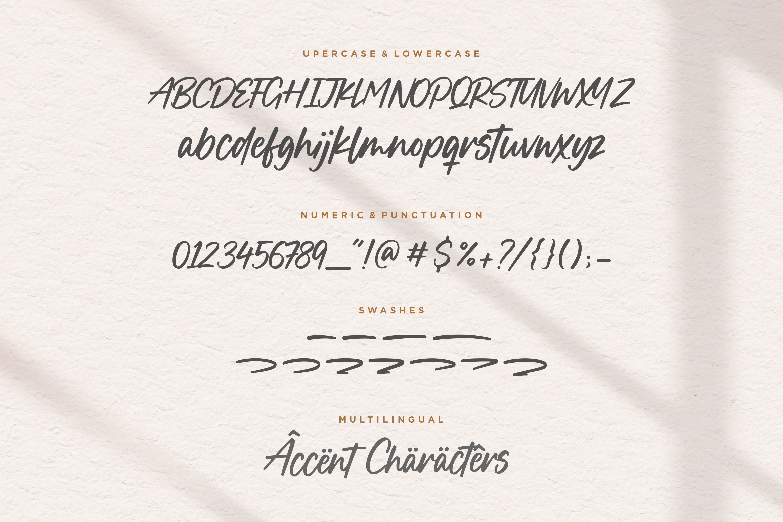 Boucik Bold Calligraphy Font -3