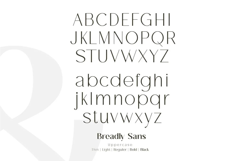 Breadley Sans Bold Sans Serif Font -2