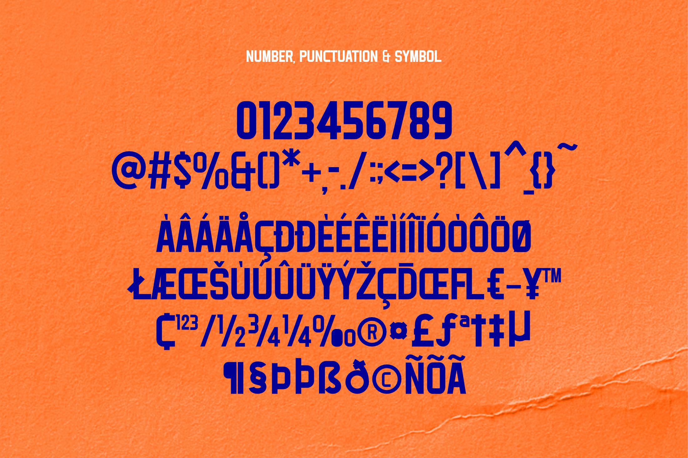Goetz Modern Sans Serif Font -3
