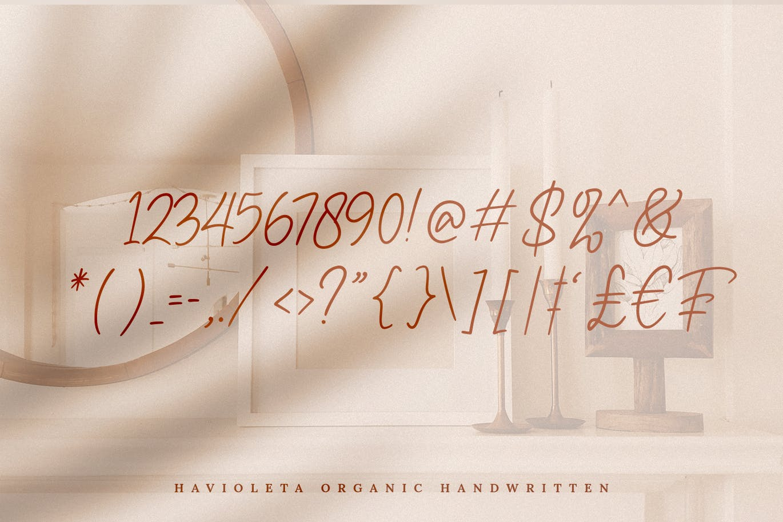 Havioleta Organic Handwritten Font -3