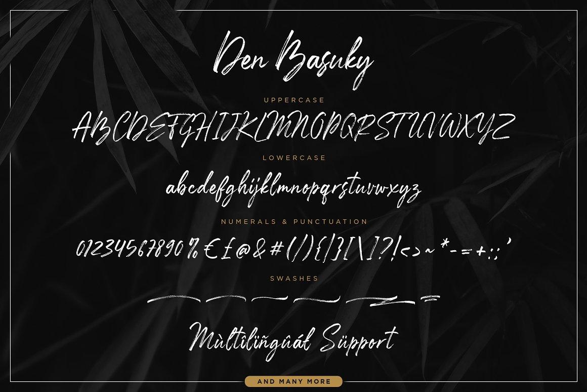 Den Basuky Rustic Brush Font -3