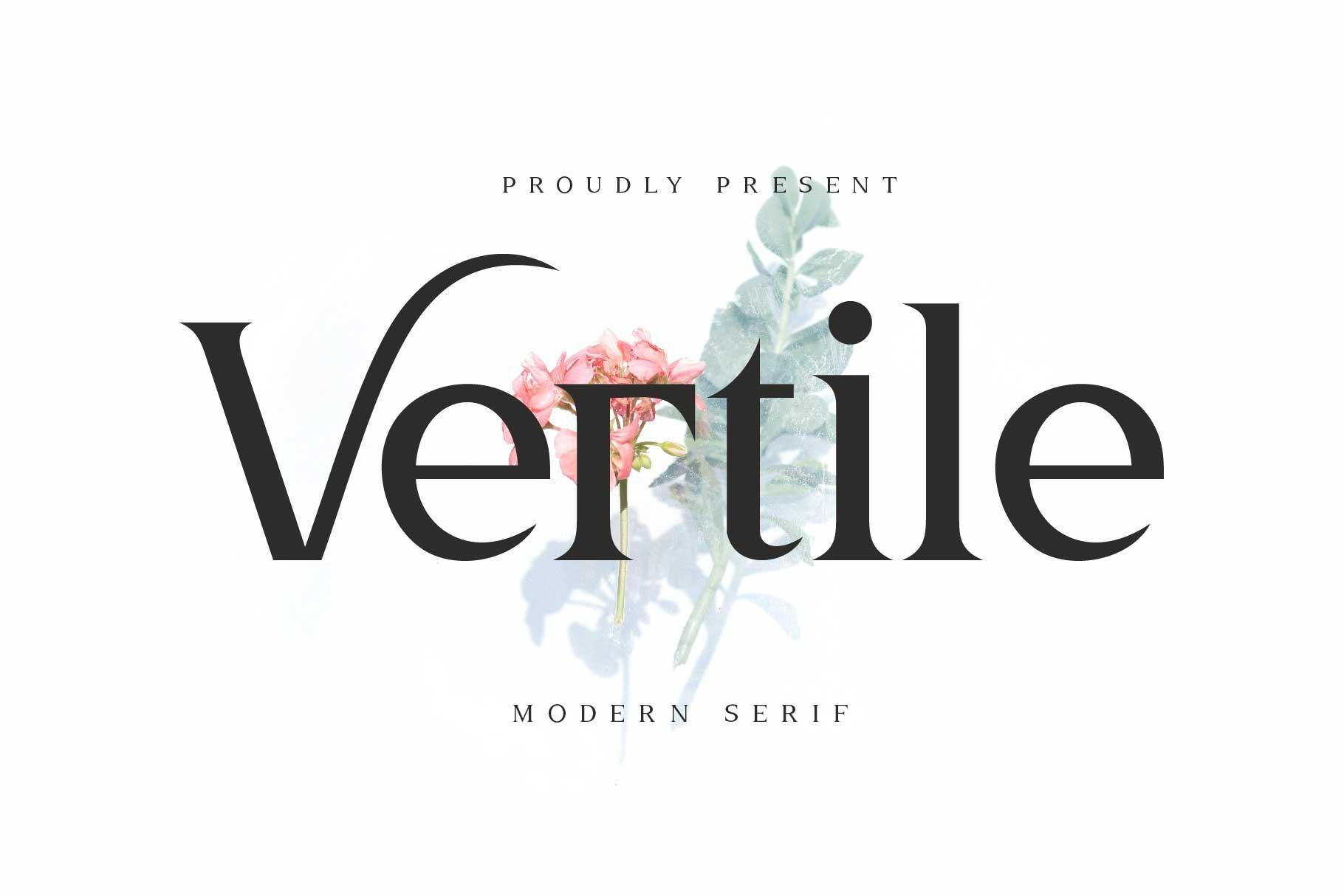 Vertile Modern Serif Font -1