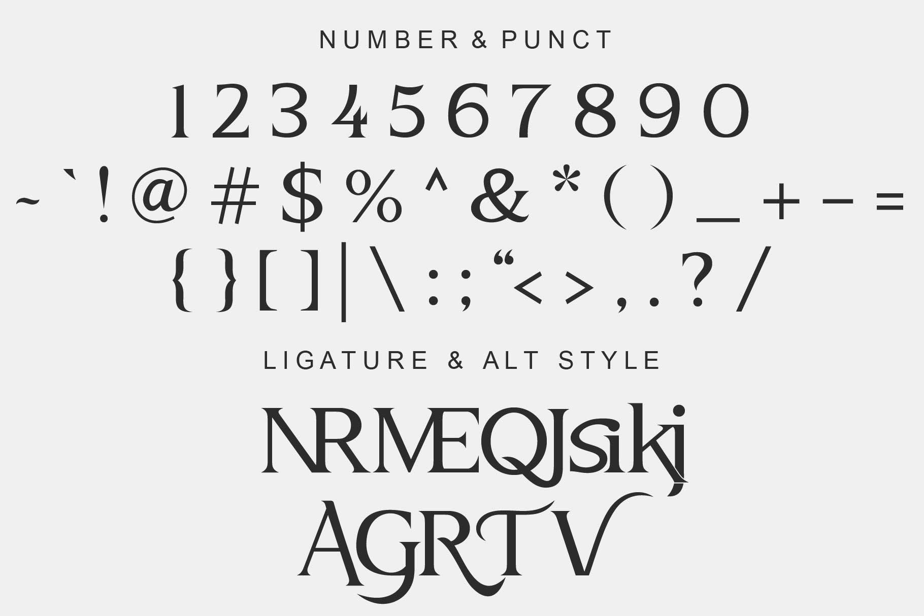 Vertile Modern Serif Font -3