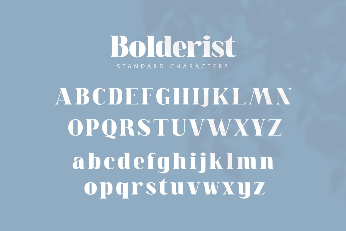 Bolderist Serif Font -2