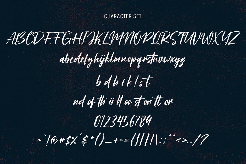 Roxfranks Brush Script Font -3