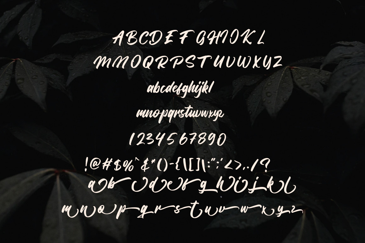 Bangela Brush Script Font -3