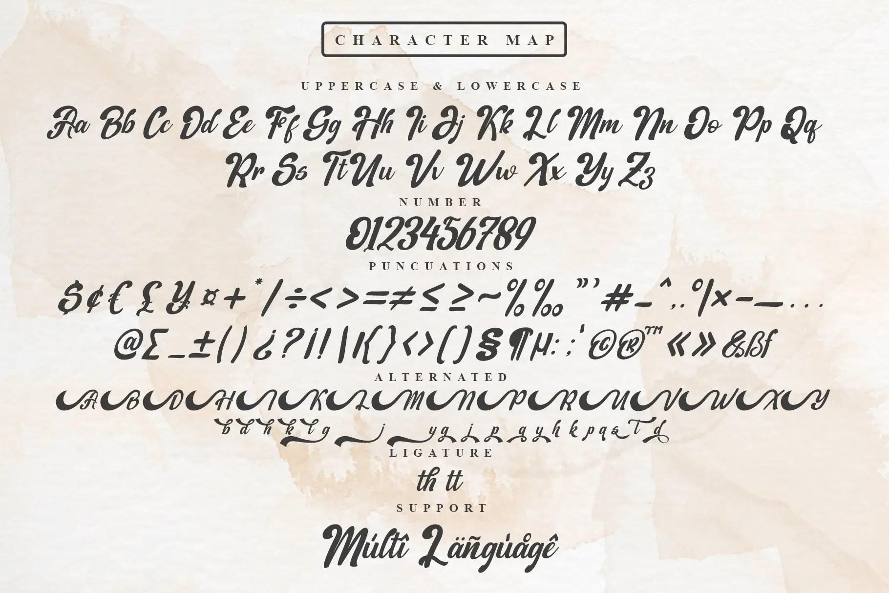 Beautiful Handmade Script Font -3