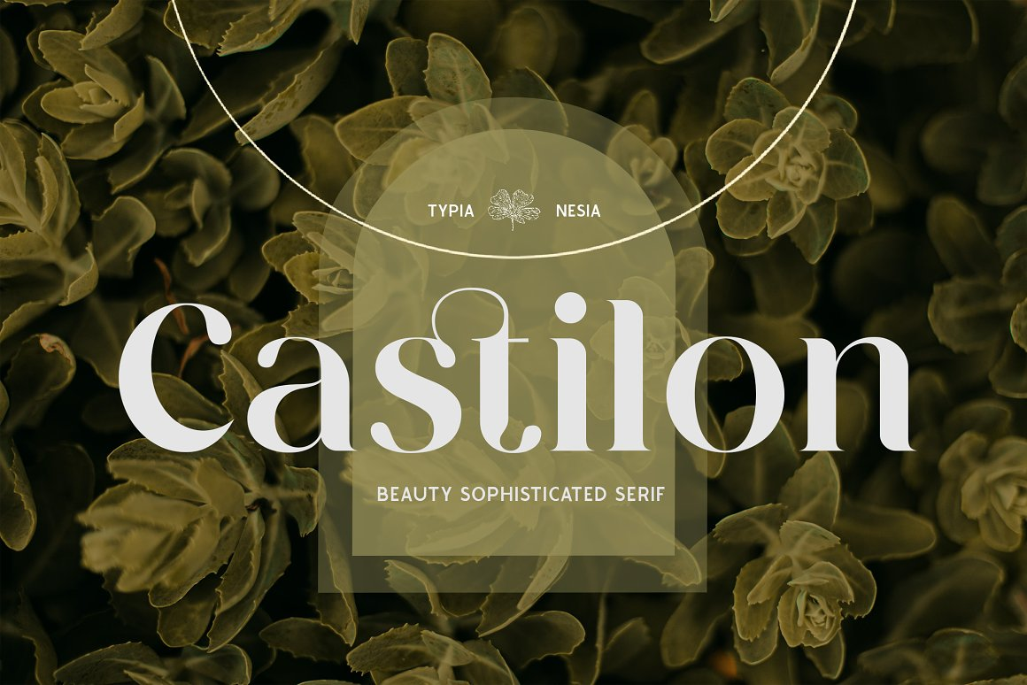 CastilonSerif Font -1