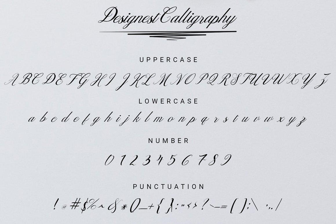 Designest Modern Calligraphy Font -3