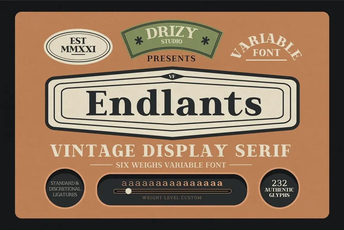 Endlants Serif Font Family -1