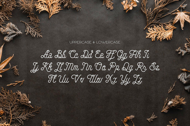Hellofolks Monoline Typeface -2