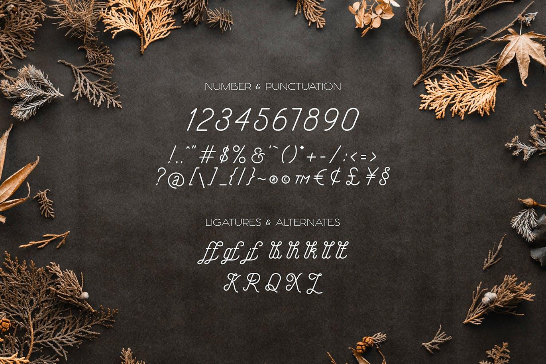 Hellofolks Monoline Typeface -3