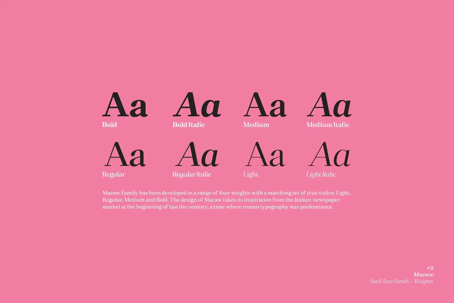 Macaw Modern Serif Typeface -3