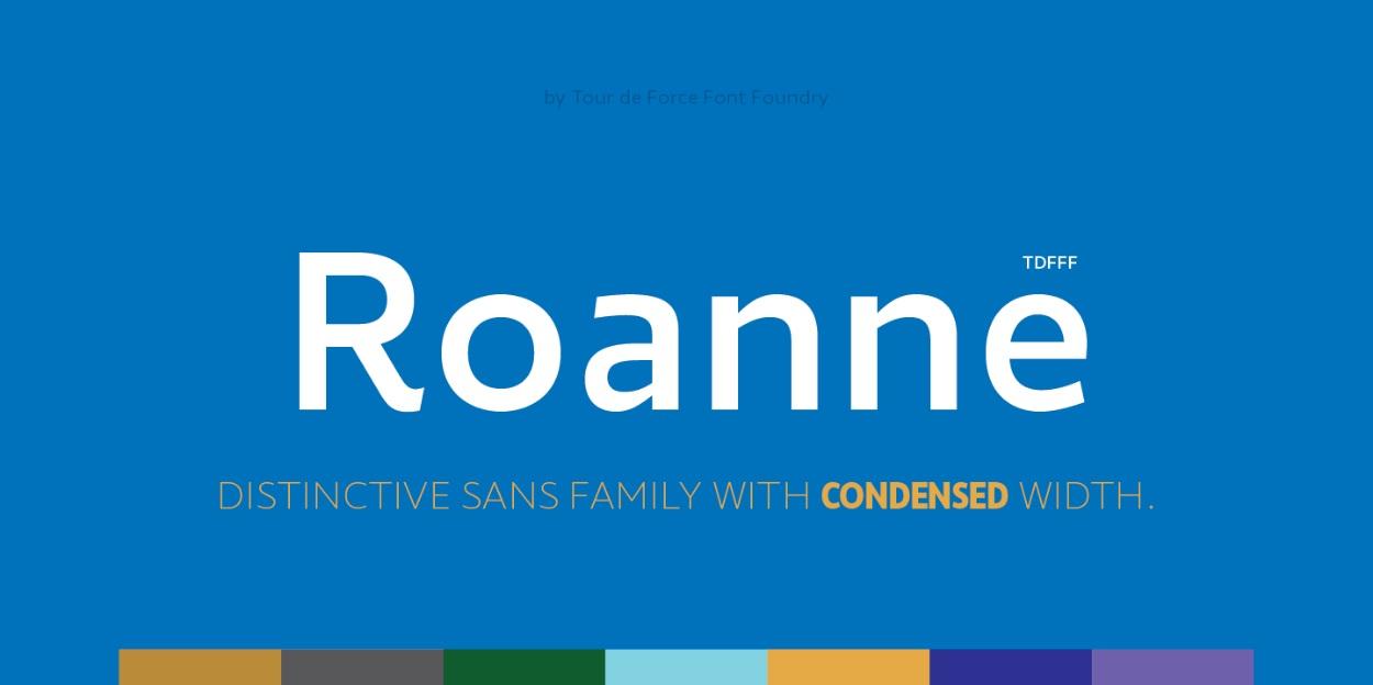 Roanne Sans Serif Font -1