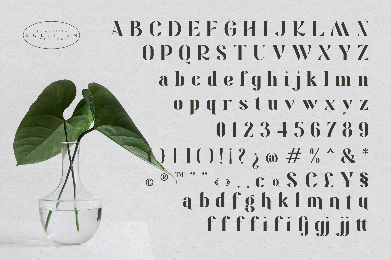 Solitten Elegant Stylish Typeface -3