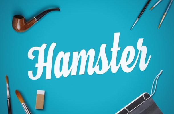 Hamster Script Font