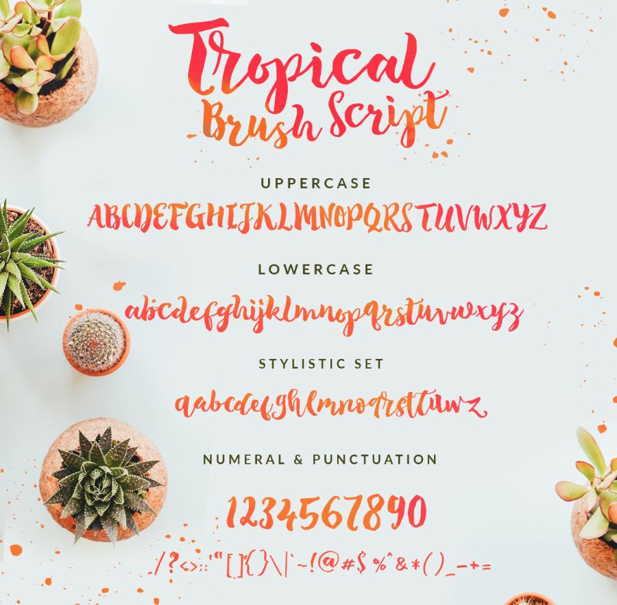 Tropical-Brush-Script-Free-Demo-prev03