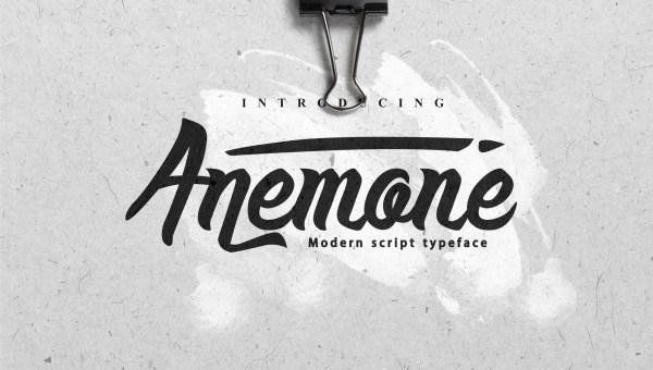 Anemone Script Font Free