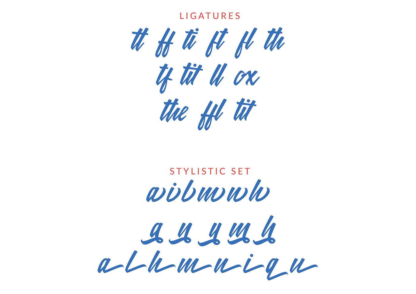 meithey-bold-script-font-2