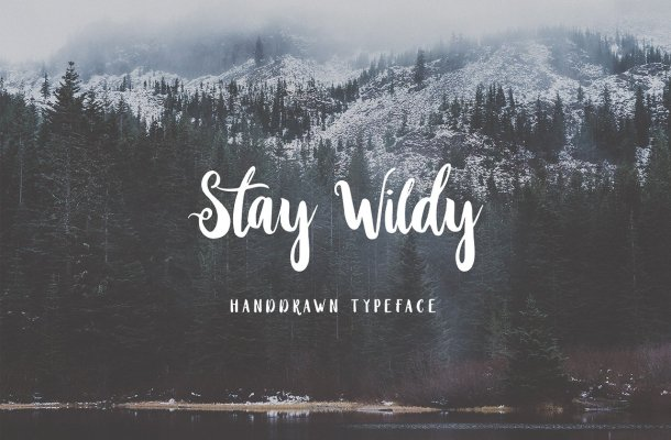 Stay Wildy Script Font Free