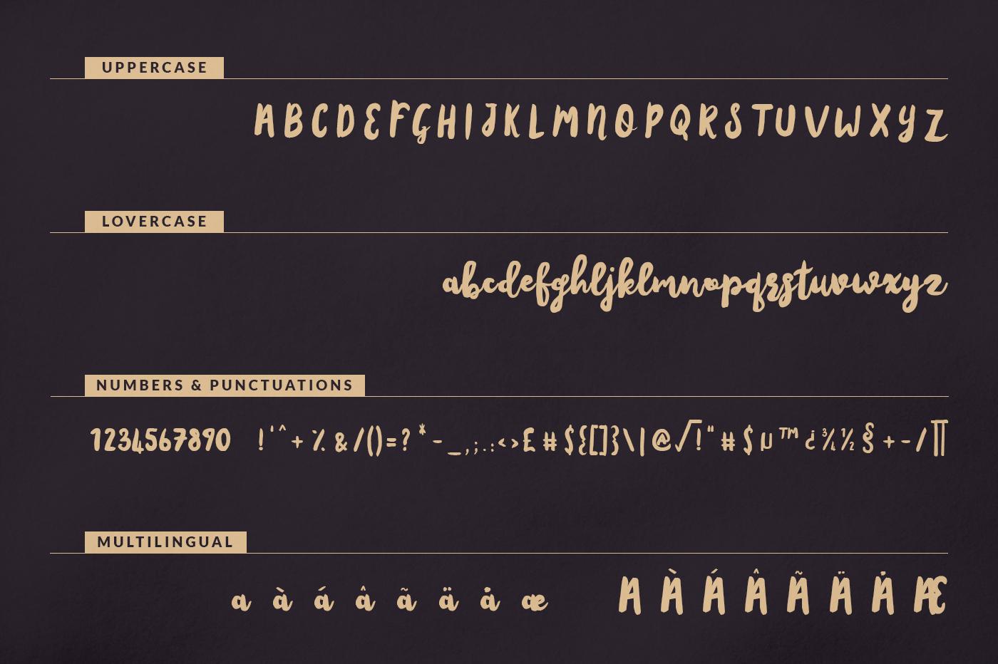 amsterdam-script-font-6