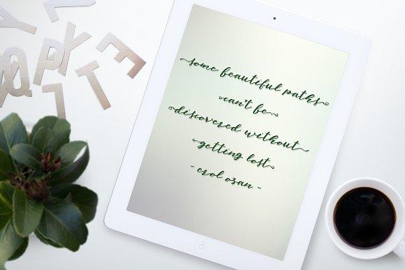elfa-brush-font-1