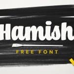 Hamish Script Font Free