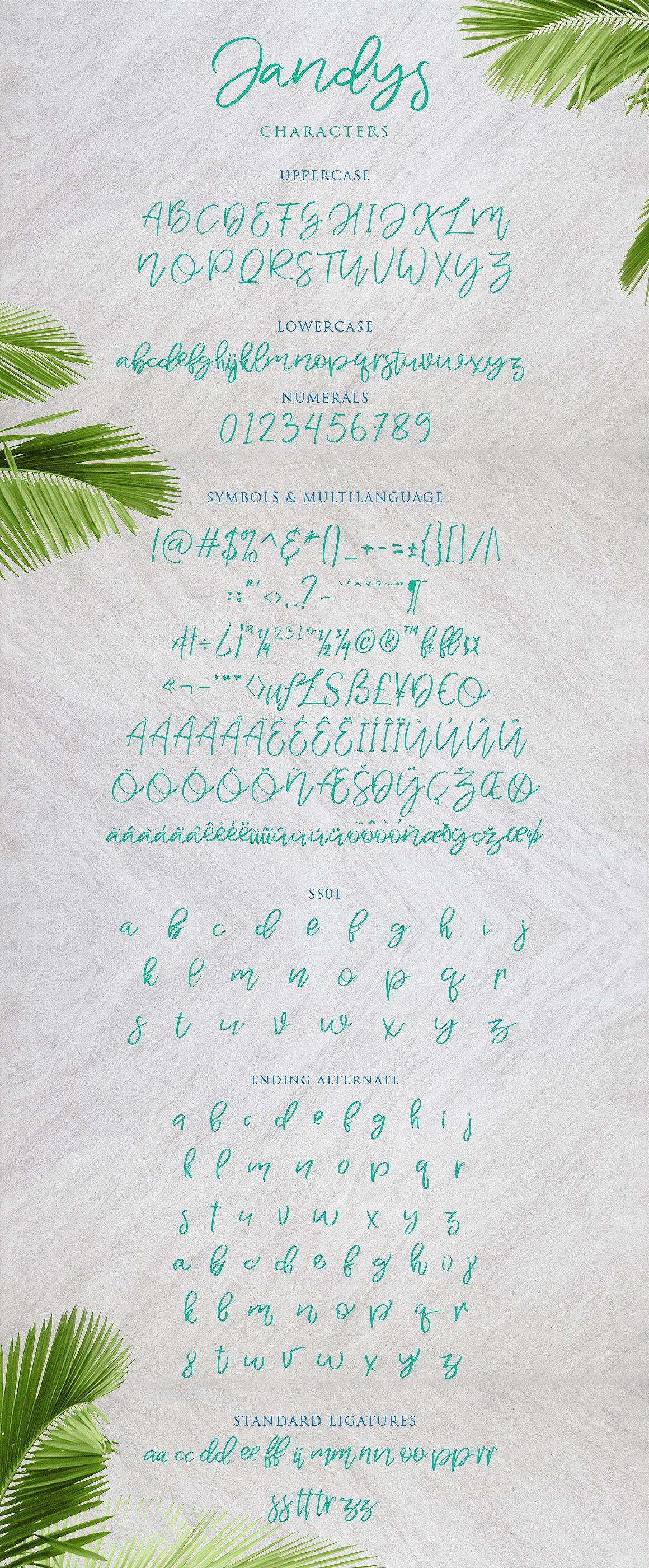 jandys-typeface-1