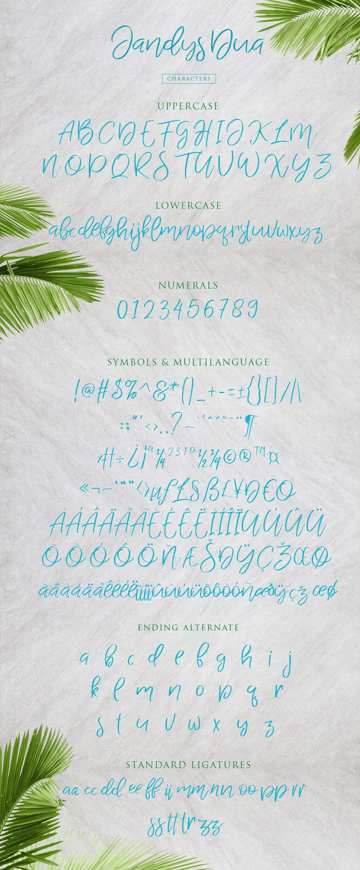 jandys-typeface-2
