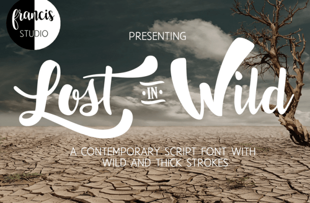 Lost in Wild Font Free