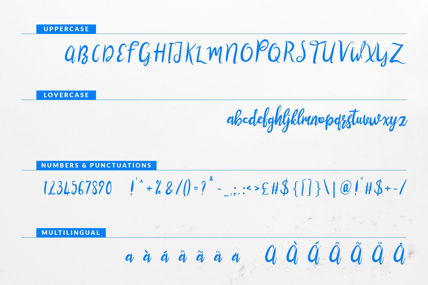 lustinmal-script-font-4