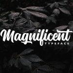 Magnificent Script Font Free