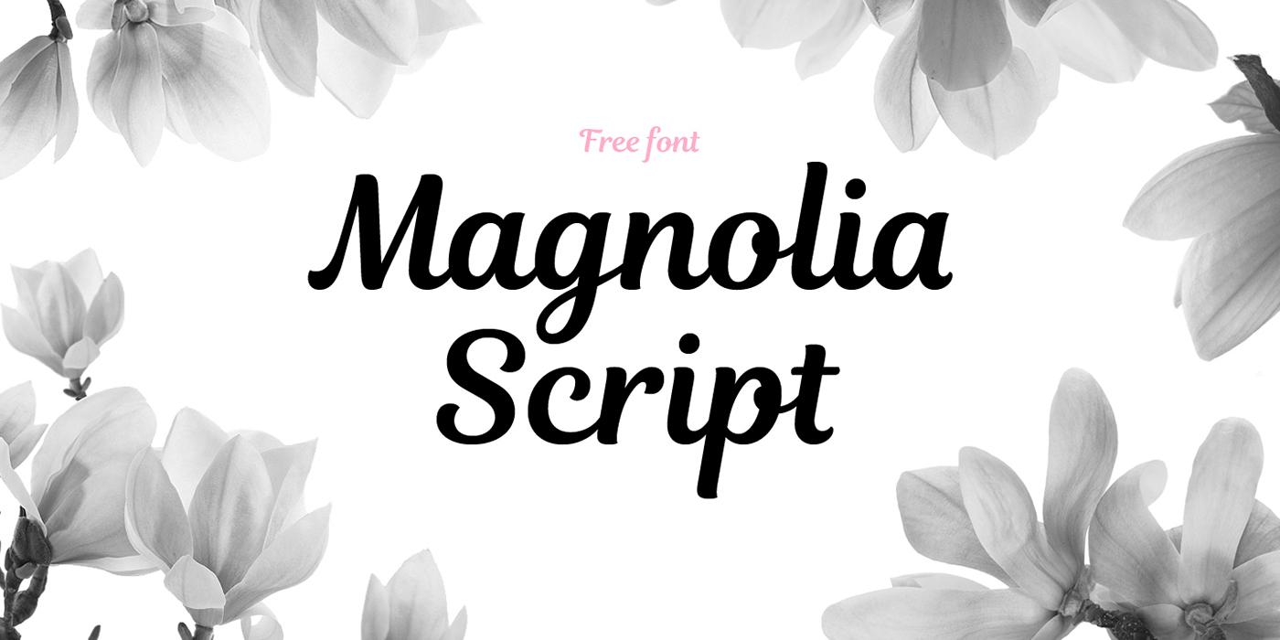 magnolia-script-font