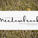 Meadowbrook Font Free