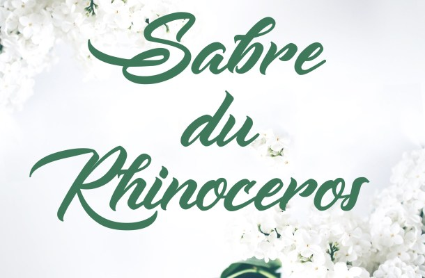 Sabre du Rhinoceros Font Free