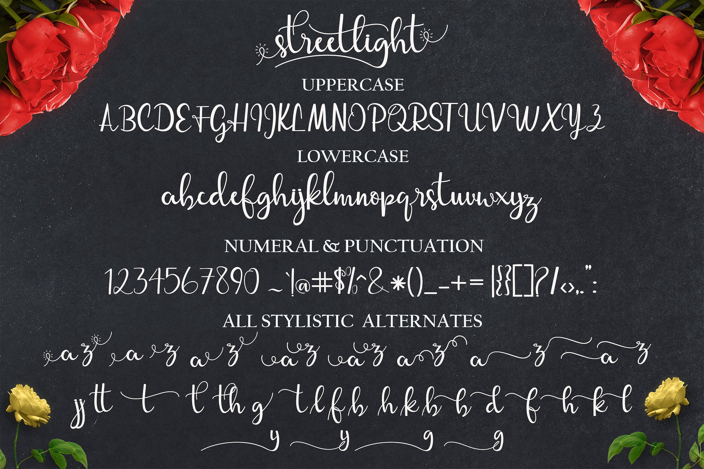 streetlight-script-font-5