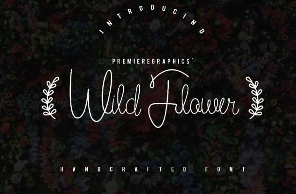Wild Flower Script Font Free