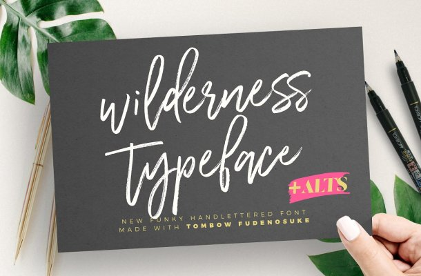 Wilderness Brush Font Free
