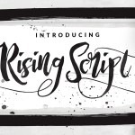 Rising Brush Font Free